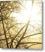 03 Foggy Sunday Sunrise Metal Print