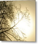 08 Foggy Sunday Sunrise Metal Print