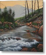 090430-1216   Trout Creek - Spring Metal Print