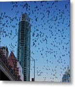 1.5 Million Mexican Free-tail Bats Overtake The Austin Skyline As They Exit The Congress Avenue Bridge Metal Print