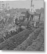 A Farmer Driving A Tractor Metal Print