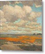 A Field Of California Poppies Metal Print