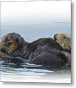 A Mama Sea Otter And Her Babe Metal Print