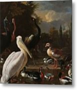 A Pelican And Other Birds Near A Pool, Known As The Floating Feather, Melchior D Hondecoeter, Metal Print