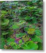A Pretty Pond Full Of Lily Pads At A Water Temple In Bali. Metal Print