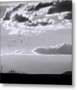 A Quiet World Metal Print