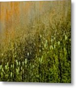 Abstract Spring Metal Print