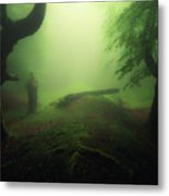 Abyss Metal Print