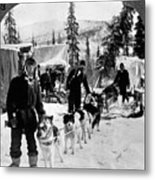 Alaskan Dog Sled, C1900 Metal Print