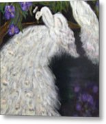 Albino Peacocks Metal Print