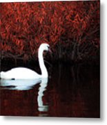 Along The Shores Of Avalon Metal Print