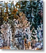 Along The Walker River Metal Print