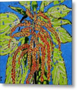 Amaranthus Sold Metal Print