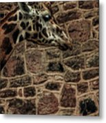 Amazing Optical Illusion - Can You Find The Giraffe Metal Print