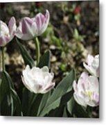 Angelique Peony Tulips Metal Print