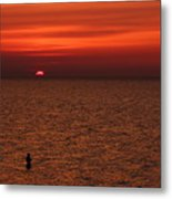 Angler In Summer Sunset Metal Print