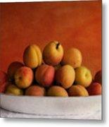 Apricot Delight Metal Print