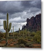 At The Base Of The Mountain Metal Print