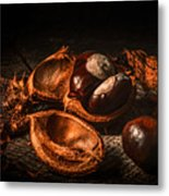 Autumn 2016 Metal Print