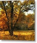 Autumn Arises Metal Print