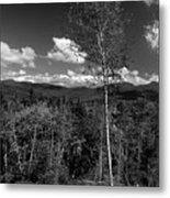 Autumn In The White Mountains Metal Print