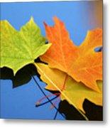 Autumn Leaves - Foliage Metal Print