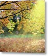 Autumn Morning Metal Print