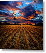 Autumn Rising Metal Print