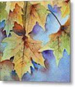 Autumn Splendor Metal Print by Bobbi Price