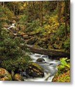 Autumn Stream Metal Print