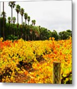 Autumn Vines Metal Print