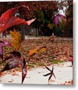 Autumn Wind Metal Print