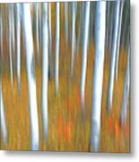 Autumn's Reluctant Departure Metal Print