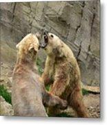 Bears Metal Print