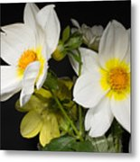Beautiful Autumn White Flowers Metal Print