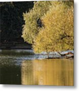 Beautiful Colorful Landscape Image Of Golden Autumn Fall Trees R Metal Print