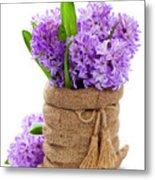 Beautiful Hyacinths Metal Print
