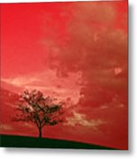 Beauty Stands Against The Terrible Sky Metal Print