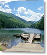 Biogradska Gora Forest  Metal Print