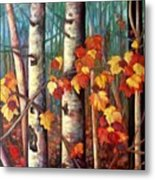 Birch And Maple Metal Print