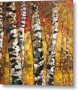 Birch Trees In Golden Fall Metal Print