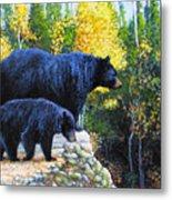 Black Bear And Cub Metal Print