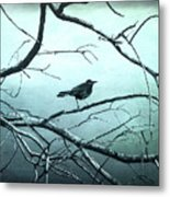 Blackbird 4 Metal Print