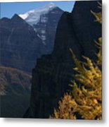 Blazing Larch Metal Print
