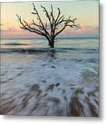 Botany Bay Morning Metal Print
