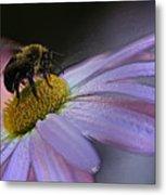 Bumble Bee On Flower Metal Print