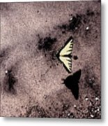 Butterfly And Sand Wc Metal Print