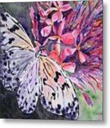 Butterfly Enchantment Metal Print