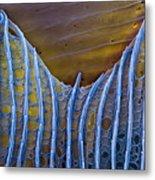 Butterfly Wing Scale Sem Metal Print by Eye of Science