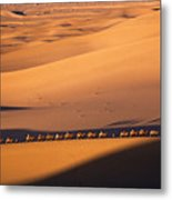Camel Caravan Crosses The Dunes Metal Print